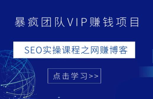 暴疯团队VIP赚钱项目教程:SEO实操课程之网上副业博客