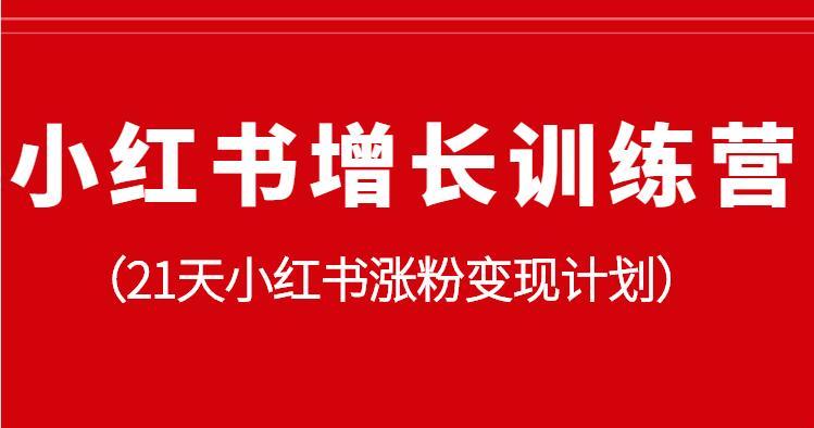 小红书增长训练营,21天小红书涨粉变现计划