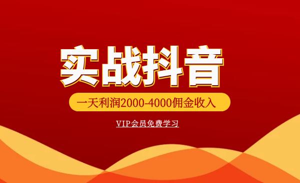 火焱社商业变现:抖音VIP实训班实战抖音(一天利润2000-4000佣金收入)