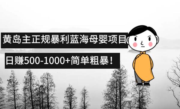 黄岛主:正规蓝海暴利母婴项目课程(日赚500-1000+简单粗暴)