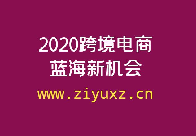2020跨境电商蓝海新机会(完结课程)
