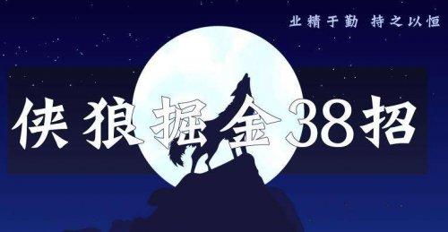 侠狼掘金38招(视频课程)